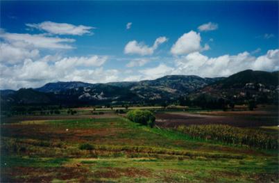vista1.jpg